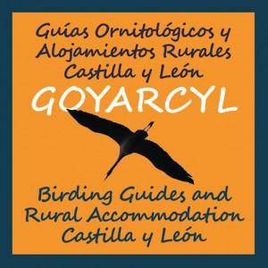 Guias Ornitológicos y Alojamientos Rurales Castilla y León